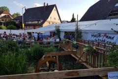 Dorffest2017 (2 von 20)